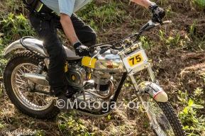 trial gallego